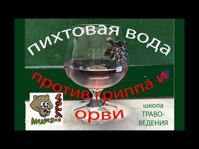 Школа травоведения Занятие № 14 1 ПИХТОВАЯ ВОДА против ГРИППА И ОРВИ