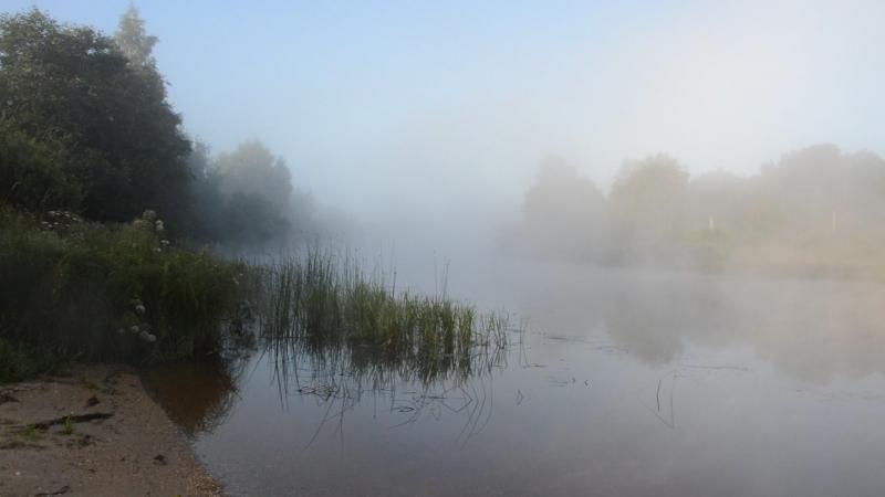 Утренний туман.Хотча.Курапово.16 августа 2017.