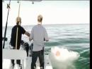 Акульи пастухи Пятница 13 е 7 я серия 2012