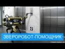 Четвероногие друзья будущего: робот-помощник из Швейцарии