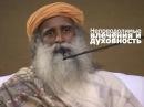 Непреодолимые влечения и духовность Садхгуру