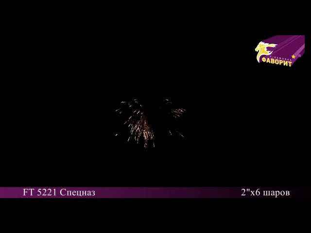 Фестивальные шары FT 5221 Спецназ