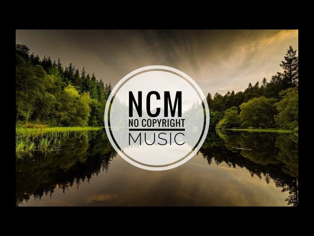 Zara Larsson, MNEK - Never Forget You (Remix) No Copyright Music Музыка Без авторских прав