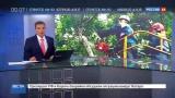 Новости на «Россия 24» • Сезон • В трех районах Новгородской области введен режим ЧС