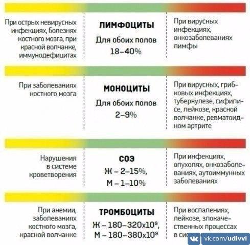 Хотите расшифровать анализ крови?  Пожалуйста!  #udivvi #самоеинтересное