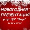 """Новогодняя презентация Центра """"Озеро"""""""