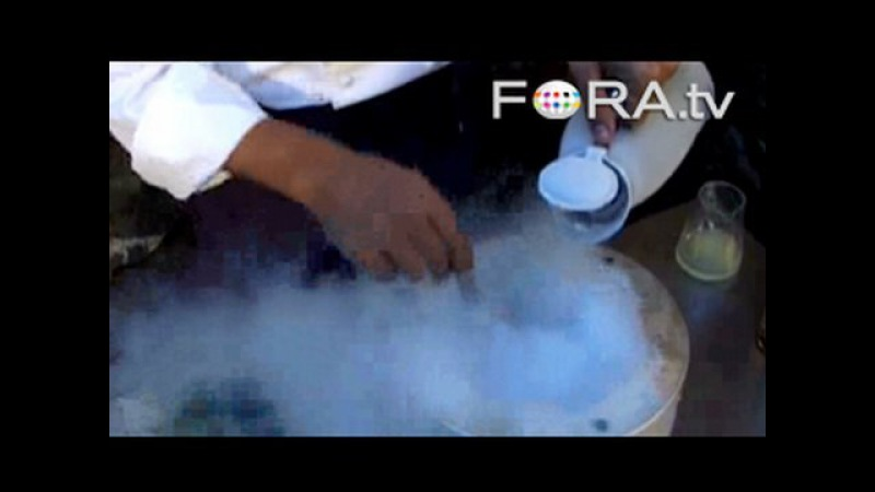 Cooking with Liquid Nitrogen - Ferran Adria and Harold McGee