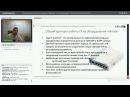 Фильтрация соцсетей и лишнего трафика: использование L7 возможностей в Mikrotik
