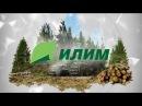 Группа Илим крупнейшая компания российской целлюлозно бумажной промышленн
