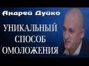 Омоложение организма Остановка процессов старения Советы Андрея Дуйко