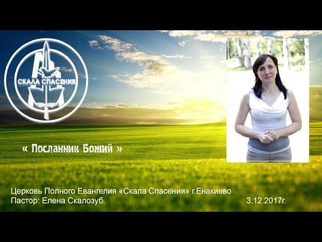 3 12 2017 Елена Скалозуб Посланник Божий