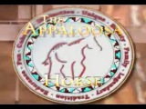 The Appaloosa Horse TV Show - WHOLE SHOW