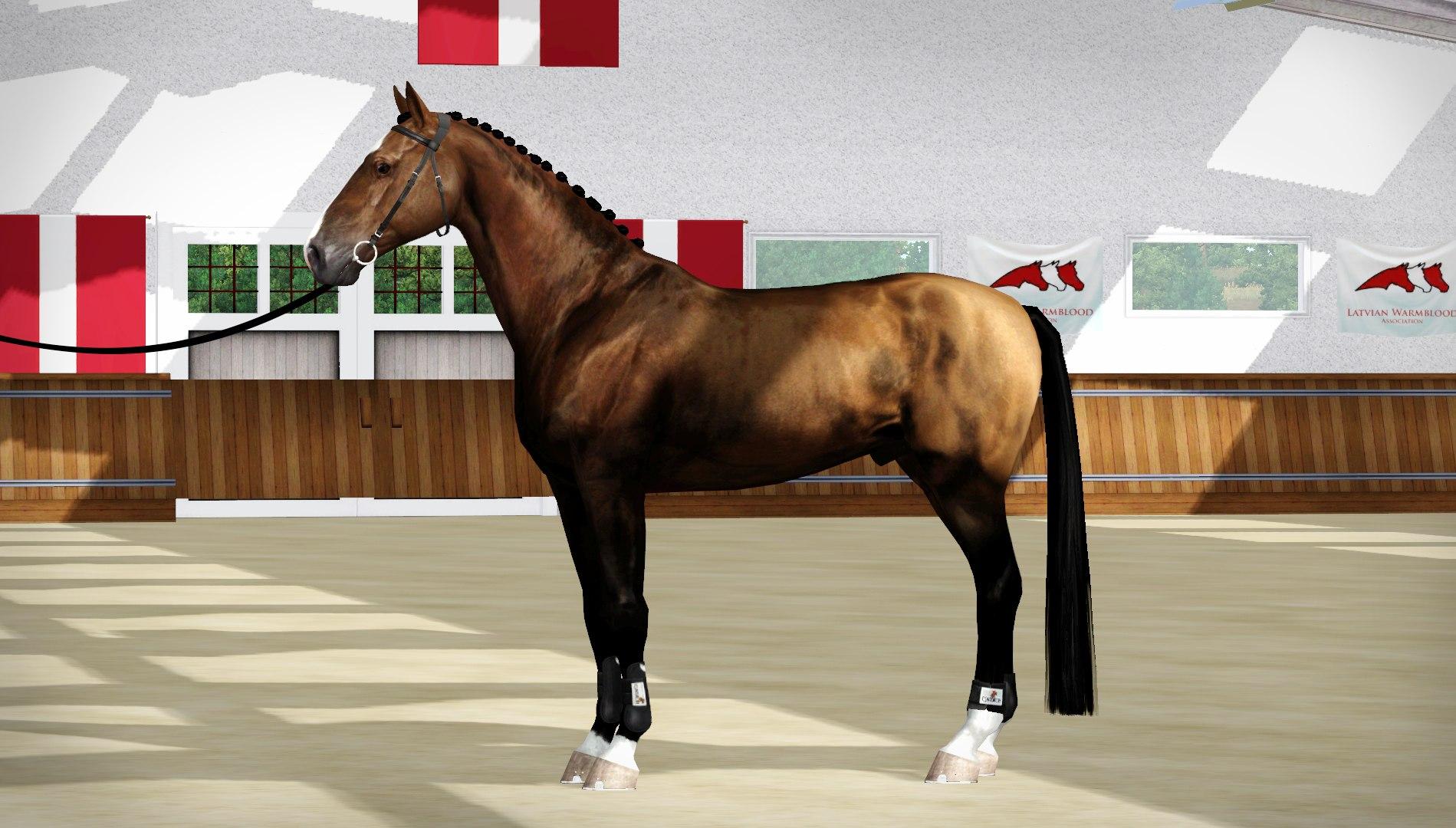 Регистрация лошадей в RHF 2 - Страница 3 IkyjNoLhjdA
