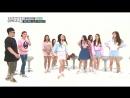 (Weekly Idol EP.259) Gugudan K-pop idol star cover dance battle