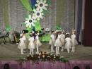 танец деток Капельки