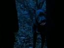 Приключения Шерлока Холмса и доктора Ватсона. Король шантажа