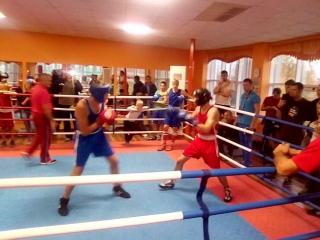 бокс спаринги 1