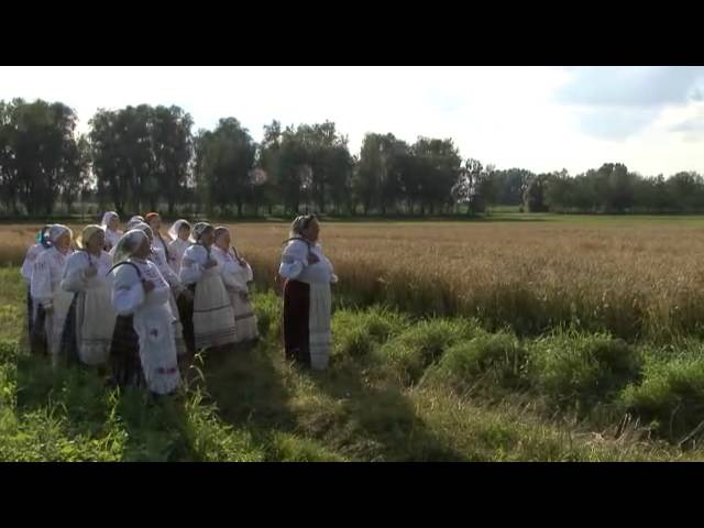 2014 07 17 зажинки в деревне Житомля rite zazhinki in the village Zhitomlya of Grodno region
