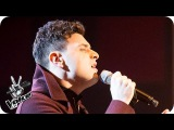 Vangelis performs Always On My Mind Knockout Performance - The Voice UK 2016