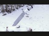 Predator Machete vs. The Stump of Truth