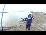 Налим на донку. Открытие сезона 2017 открытая вода. Сибирь река Обь.