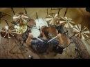 Мельница Тристан Дмитрий Фролов барабаны