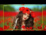 Красные маки Песня о любви  Червон маки - квти кохання