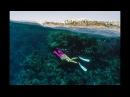 Подводный мир Красного моря, Египет 2017 июнь