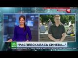 Расплескалась синева Журналист НТВ получил по лицу в прямом эфире