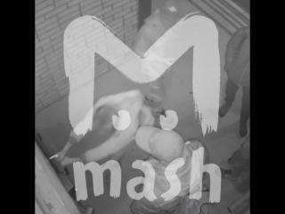 В Москве ищут руферов-вандалов, пытавшихся подняться на крышу дома