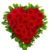 Барбарис | Цветы и букеты | Доставка бесплатно