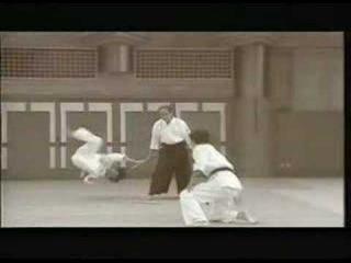 Daitoryu Aikijujutsu Okamoto Gakken