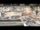 Live chicken eaten by crocodile - Siem Reap crocodile park Cambodia - not for animal lovers!