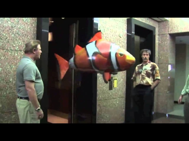 Air Swimmers - Amazing RC Flying Shark and Clownfish!