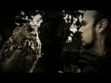 Sun Of The Sleepless - The Owl