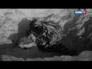 Перевал Дятлова - Конец истории!(2017!) Спустя столько лет тайна раскрыта