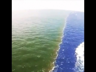 Он - Тот, кто смешал два моря (вида-воды) одно-приятное, пресное, а другое-соленое, горькое. Он установил между ними преграду и