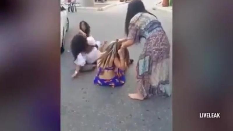Четыре разъяренные женщины оттаскали друг друга за волосы.