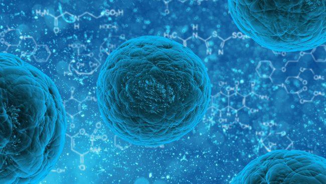 rdxMZS-pSQs Найден способ «перепрограммировать» клетки для лечения заболеваний