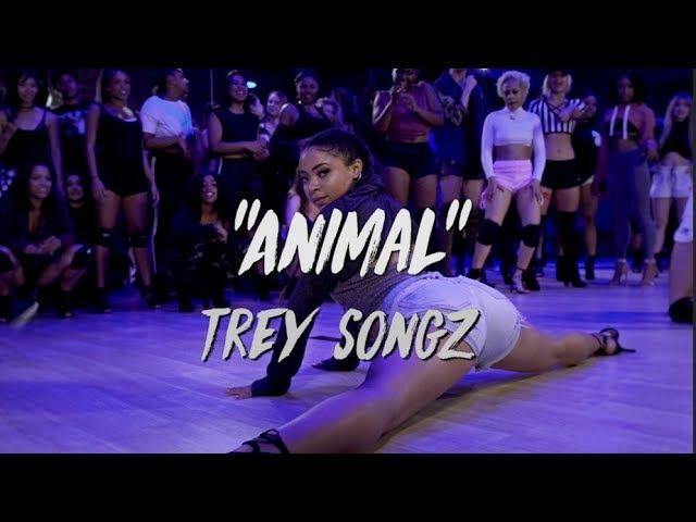 Trey Songz - Animal | Nicole Kirkland Choreography