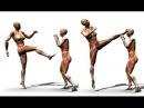 Karate TKD Taekwondo Martial Arts Kick Kicking Core Training Drills