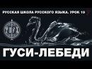 Русская школа русского языка. Гуси - Лебеди. Урок 19. Виталий Сундаков