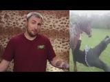 100500   Синяк и Лошадь