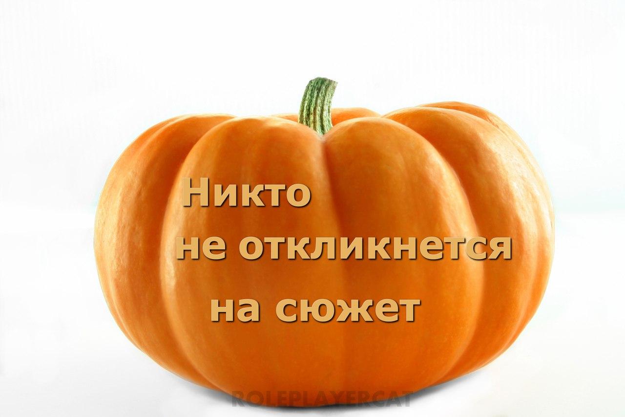https://pp.userapi.com/c639330/v639330213/58c11/3yMVD2uggqk.jpg