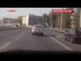 Погоня за сбежавшим жертвенным бараном в Казани