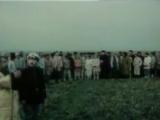 Вся суть столыпинской реформы за несколько минут Хлеб имя существительное, 1988