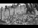 Rabbit Drives, 1934. Kansas Emergency Relief Committee.