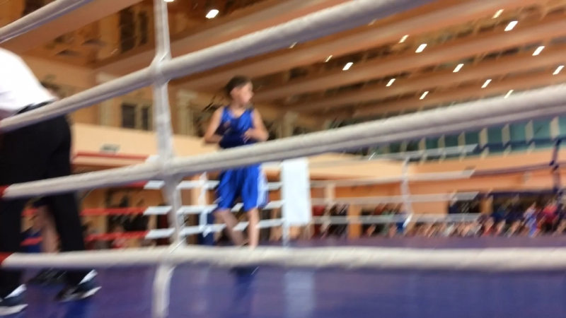 Бой по боксу поднимают руки