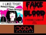 Fake Blood vs Richard Vission - I Think I Like That (Coda Collins Smash Up)