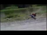 Как правильно драться с мартышкой (капуцином)